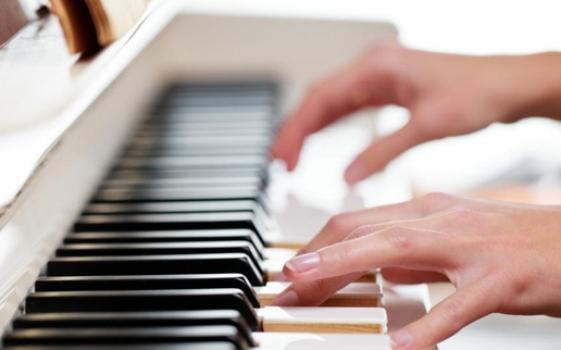 músico profissional e amador
